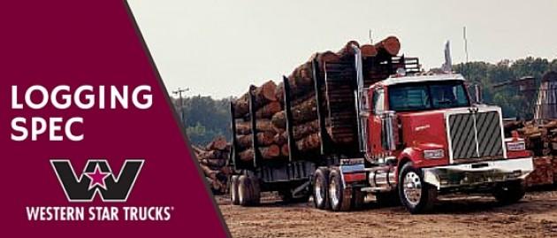 December Logging Special